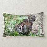 Mariposa de monarca almohadas