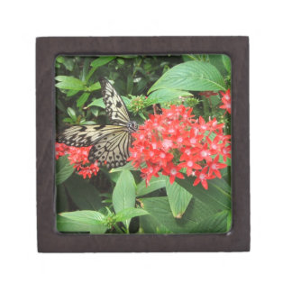 Mariposa de monarca bonita en la flor rosada Bush Cajas De Joyas De Calidad