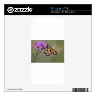 Mariposa de monarca calcomanía para iPhone 4
