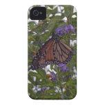 Mariposa de monarca Case-Mate iPhone 4 cárcasa