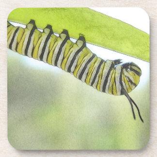 Mariposa de monarca Caterpillar que explora un Mil Posavasos De Bebidas