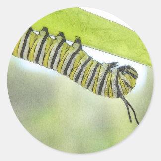 Mariposa de monarca Caterpillar que explora un Pegatina Redonda