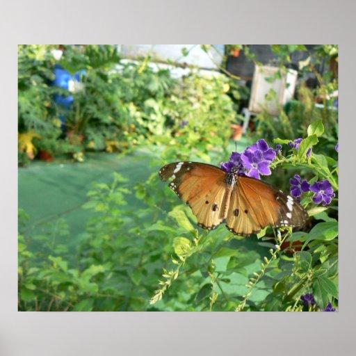 Mariposa de monarca con el poster de la visión