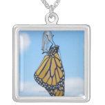 Mariposa de monarca, con la crisálida colgante personalizado