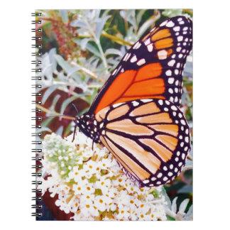 Mariposa de monarca cuaderno