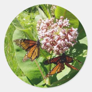 Mariposa de monarca de acoplamiento en la foto del pegatina redonda