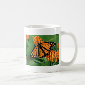 mariposa de monarca de las mariposas taza