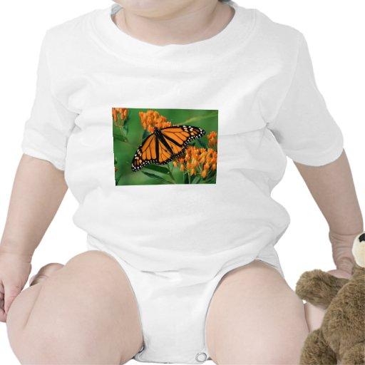 mariposa de monarca de las mariposas traje de bebé