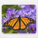 Mariposa de monarca de Mousepad en asteres púrpura Alfombrillas De Ratones