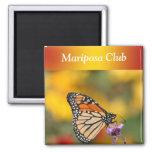 Mariposa de monarca en busca del polen imán cuadrado