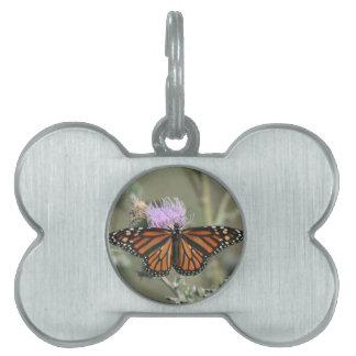 Mariposa de monarca en etiqueta del mascota de la placas de nombre de mascota