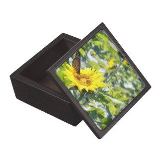 Mariposa de monarca en la caja de regalo del giras cajas de recuerdo de calidad