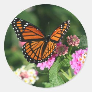 Mariposa de monarca en la flor del Lantana Pegatina Redonda
