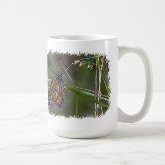 Mariposa de monarca en la frontera del blanco de taza clásica