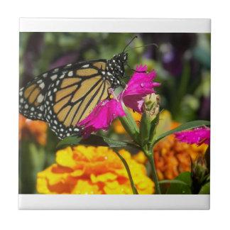 Mariposa de monarca en la maravilla-teja rosada azulejo cuadrado pequeño
