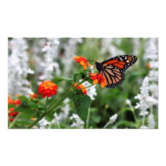 Mariposa de monarca en Lantana anaranjado y rojo Cojinete