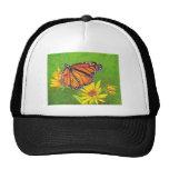 mariposa de monarca en las flores gorras