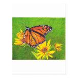 mariposa de monarca en las flores postal