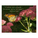 Mariposa de monarca en las flores rosadas en el su poster