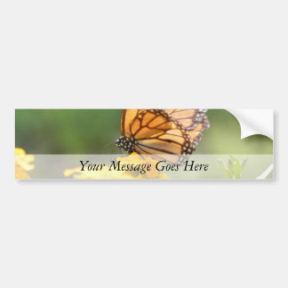 Mariposa de monarca en los Wallflowers siberianos Etiqueta De Parachoque