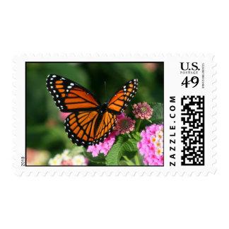 Mariposa de monarca en sello de la flor del