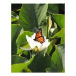 Mariposa de monarca en un cojín de lirio plantillas de membrete
