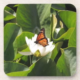 Mariposa de monarca en un cojín de lirio posavasos