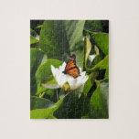 Mariposa de monarca en un cojín de lirio rompecabeza con fotos