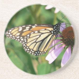 Mariposa de monarca en una flor púrpura del cono posavasos para bebidas