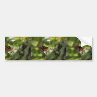 Mariposa de monarca en una ramita etiqueta de parachoque