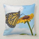 Mariposa de monarca en una Susan observada negro Cojín