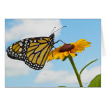 Mariposa de monarca en una Susan observada negro Tarjeta De Felicitación