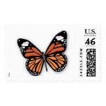 Mariposa de monarca envio