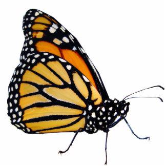 Mariposa de monarca fotoescultura vertical