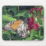 Mariposa de monarca, flores rojas tapetes de ratón