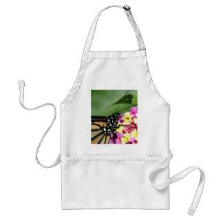 Mariposa de monarca hermosa en la flor del Lantana Delantal