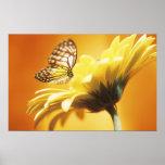 Mariposa de monarca hermosa en un estampado de flo poster