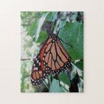 Mariposa de monarca hermosa rompecabeza con fotos