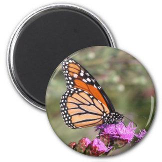 Mariposa de monarca imán para frigorifico