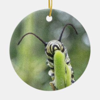Mariposa de monarca joven caprichosa Caterpillar Adornos