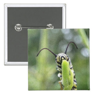 Mariposa de monarca joven caprichosa Caterpillar Pins