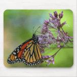 Mariposa de monarca Mousepad - contra verde Alfombrillas De Ratones