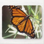 Mariposa de monarca Mousepad Tapete De Ratones