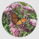 Mariposa de monarca pegatinas redondas