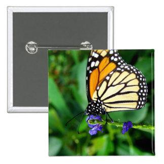 Mariposa de monarca pin cuadrado