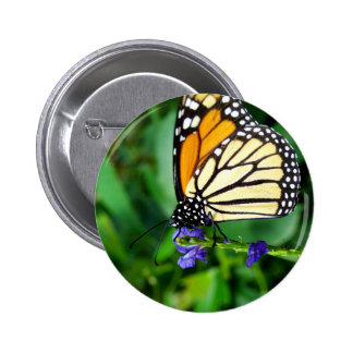 Mariposa de monarca pin redondo de 2 pulgadas