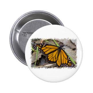 Mariposa de monarca pins
