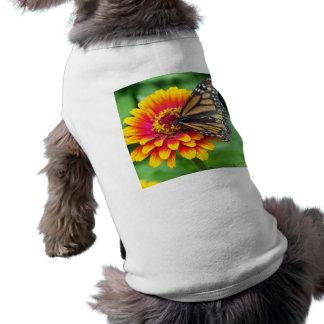 Mariposa de monarca playera sin mangas para perro
