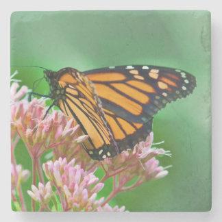 Mariposa de monarca posavasos de piedra
