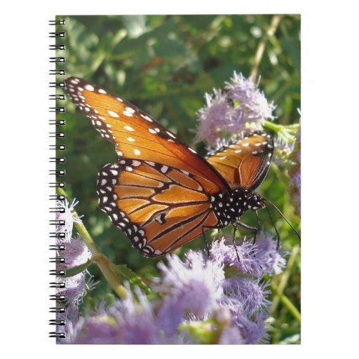 Mariposa de monarca que descansa sobre una flor libreta espiral
